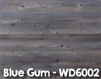 Blue_Gum_WD6002