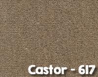 Castor-617