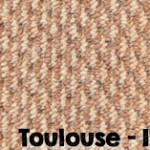 Toulouse-113