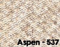 Aspen-537