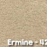 Ermine-422