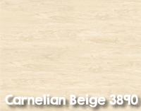 Carnelian_Beige_3890