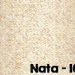 Nata-101