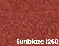 Sunblaze 1260