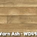 Warn_Ash_WD4982