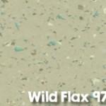 Wild_Flax_9701